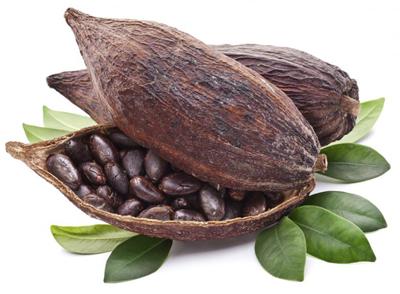 Granos de cacao de chocolate en Astorga.